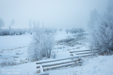 Idaho, Cascade. A creek and fence run through a snowy, misty landscape scene.
