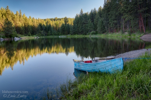 Idaho,, North Central, Winchester. A rowboat moored to the shore of Winchester Lake in Winchester State Park in early summer.