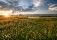 Idaho, Eastern, Driggs. Sunrise in the Teton Valley in spring.