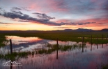 Idaho South Central, Camas County, Fairfield. Evening light over the camas fields of the Centennial Marsh in spring.