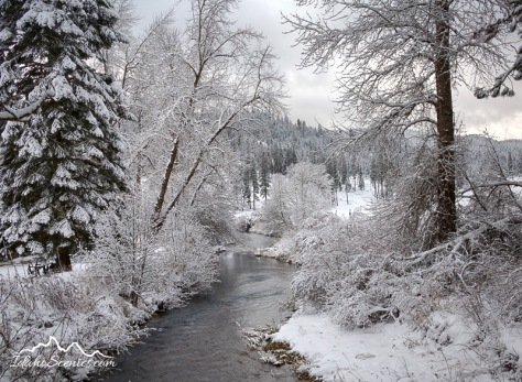 Idaho, North, Kootenai County, Coeur d'Alene. Wolf Lodge Creek on a winter day.