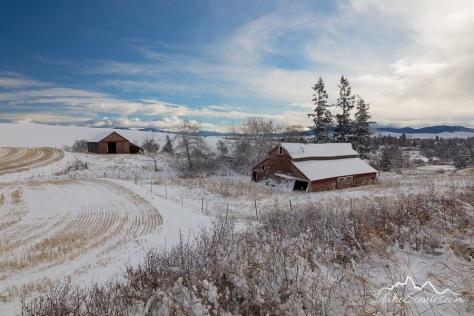 Washington, Eastern, Tekoa. An old barn in a snow covered landscape.