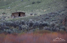 Idaho, East Central, Salmon, North Fork. An old log cabin seen across the Salmon River at Colston access.